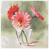 GerberasCoral Gerbera (cross stitch, вышивка крестом) - Analia Gabriela Frola - Picasa Web Albums