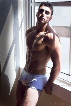 Window Hunk