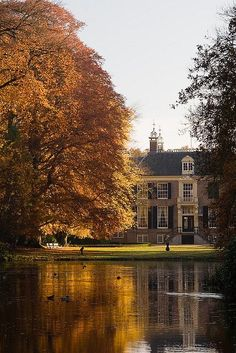 "exploringthenetherlands: ""Glorious Autumn morning (by KennethVerburg.nl) """