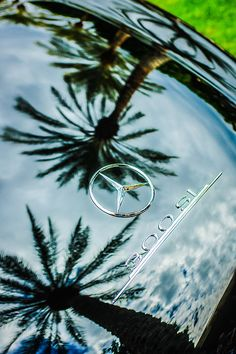 Photograph - 1957 Mercedes-benz Rear Emblem by Jill Reger , Mercedes Logo, Mercedes Benz Cars, Mercedes Benz Wallpaper, Mercedez Benz, Classic Mercedes, Hood Ornaments, Chevrolet Chevelle, Car Photography, Thanks