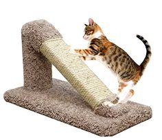 cat scratching post angle - USA Made Cat Scratching Post Sisal in Brown Incline Cat Furniture Scratcher Kitten   #CatScratchingPost