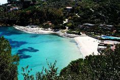 isola del giglio - cannelle beach