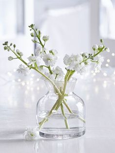 What we love most about this understated glass vase, is its simplicity and retro feel.