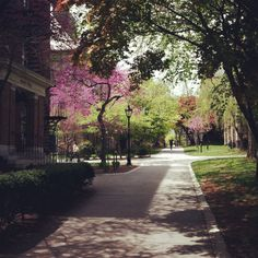Brown University-my adviser thinks I could go here for grad school. I think he's a lil crazy
