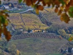 Piemont im Herbst #travel #reisen #vacation #urlaub #europe #italy #piemont #italien #herbst #autumn Painting, Travel, Italy, Fall, World, Vacation, Viajes, Painting Art, Paintings