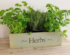 Indoor Herb Garden - by Viridescent - Wooden Windowsill Planter Box for the  Kitchen. Kit Contains Everything you Need to Grow Your Own Fresh Herbs.