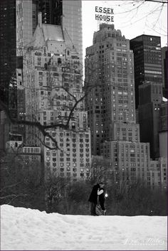 new-york-wedding-photographer-central-park-winter-snow-engagement-session-picture-32