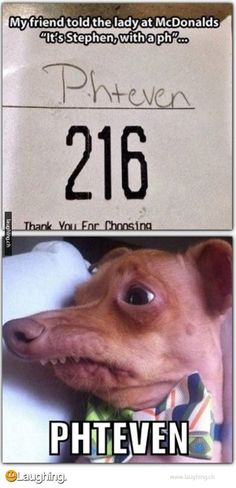 I am laughing waaaaayyyy more than I should be.  I Don't know what it's funniest part/  Human  stupidity or the ugly dog