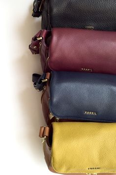 #Fossil Fall #colorcurious