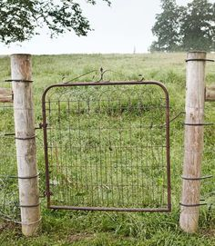 A simple garden gate. Simplicity rules my soul. My friend Vickie Morris just gave me a wide gate just like this.