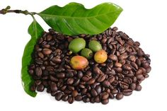 To actually benefit from coffee, especially for weight loss, scientists have found that it's best to extract the essence of the green coffee bean—those potent antioxidants. One in particular is called chlorogenic acid. This powerful antioxidant minimizes blood sugar spikes after a meal and results in improved sugar metabolism.
