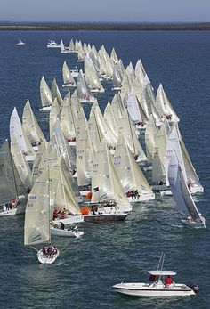 Sailing competition - all boats formed shape of a sail. Wow! Some of them are chartered only for contest :)