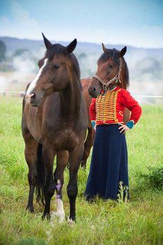 Cabeza de caballo. Fotos captadas en el momento preciso