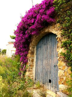 Door in Provence   agoodthinghappened.com