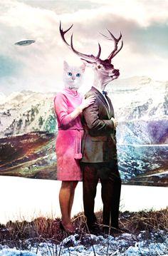 my deer, my dear