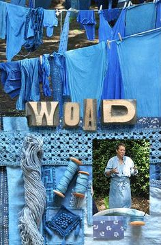 Denise Lambert workshop, sharing her passion for woad