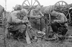 Великая Отечественная война 1941-1945 гг.