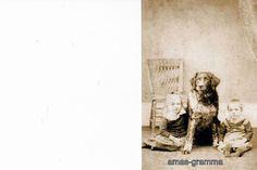 SISTER AND BROTHER WTH LARGE LANDSEER  NEWFOUNDLAND PET DOG  | eBay