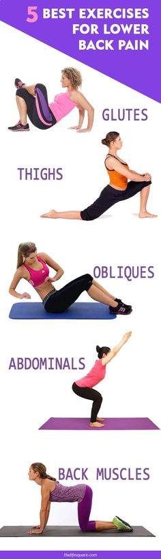 5 Best Exercises For Lower Back Pain You Will Thank Us Later For!