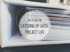 Catching up with Project Life | Amelia Writes