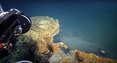"""Dubbed the """"Jacuzzi of Despair,"""" this lake on the ocean floor is made of heavy water rich with toxins."""