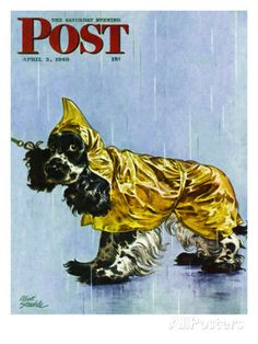 """Butch in Raingear,"" Saturday Evening Post Cover, April 2, 1949 Impressão giclée por Albert Staehle na AllPosters.com.br"