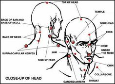 Knockout Pressure Point Chart   ... diagram of the most vital striking points around the head and neck