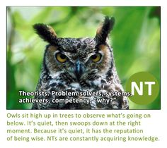NTs. ||constantly acquiring knowledge -- interwebs are deadly dangerous for this very reason.