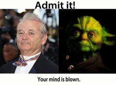 Bill Murray/Yoda