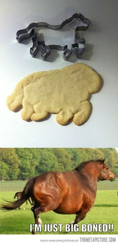 LOL for two reasons...1 my sugar cookies always do that :| and 2 that horse...seriously