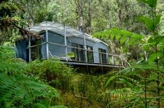Holiday accommodation and bushwalks and set in an extensive private nature reserve near Huonville in the Huon Valley, Tasmania. This multi award winning, carbon positive eco-village, offers a choice. Eco Cabin, Fantasy Forest, Holiday Accommodation, Camping, Christmas In July, Nature Reserve, End Of The World, Tasmania, Oh The Places You'll Go