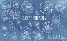 Floral Brushes - The Smell of Roses - The Smell of Roses The Smell of Roses
