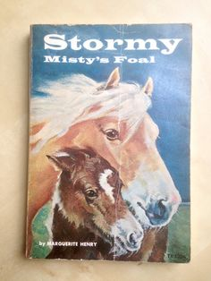Stormy, Misty's Foal by Marguerite Henry, illustrated by Wesley Dennis by LittleDipperBookCo on Etsy