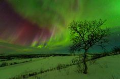 Aurora Borealis , Norway