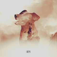 Tatoos, Beast, Country, Illustration, Dogs, Painting, Character, Collection, Random