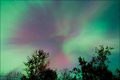 Northwest a treasure trove of awesome weather photographers  Northern Lights dance over the Western Washington skies. (Photo: Liem Bahneman)