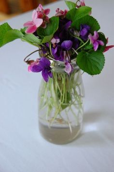 Re-use old jars as flower pots!