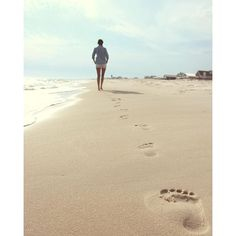 Where does your path lead to? {Sandestin Golf and Beach Resort | South Walton, FL}