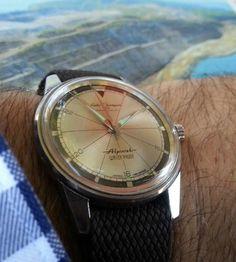 Seiko Champion 850 Alpinist Seiko Alpinist, Seiko Watches, Vintage Watches, Citizen, Omega Watch, Champion, Accessories, Antique Watches, Vintage Clocks