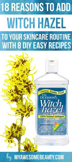 There are many unknown witch hazel uses and benefits. Learn why and how to use it effectively to cleanse, soothe and treat several skin issues naturally.