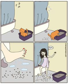 Stepping in kitty litter. All the time. 6 Signs Your Cats Actually Run Your Home