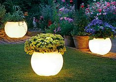 these ***ARE NOT*** glow in the dark painted pots.. they are LED planters found at this link above (Surfside Lighting). please, PLEASE do not fall for the bs about it being paint!!