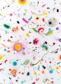 Thierry Feuz   True Technicolour Beauty