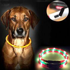 En plein air Chien Colliers USB lumineux collier de votre chien led lumière USB de charge Chat collier de chien Teddy Nuit Clignotant Collier de Votre chien fournitures