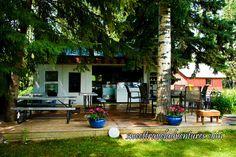 Pearson's Berry Farm's Outdoor Café Nestled Among the Trees near Bowden, Alberta, Canada