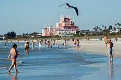 Along a seam of white sugar-sand beaches, a string of Florida beach towns offers a version of vacation bliss, replete with seafood and midcentury ambience.