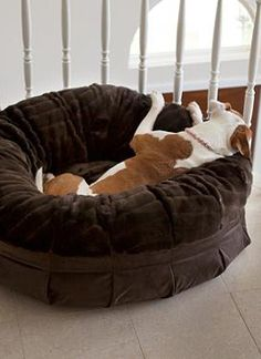 Your pup will love sleeping atop the Animals Matter® Daisy Puff Pet Bed that features an overstuff upholstery-grade polyester fiberfill.