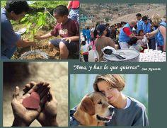 El amor es el motor de la vida humana