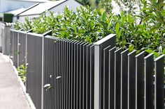 moderne zäune metall 2015   Gartenzaun   Pinterest   Zäune metall ...