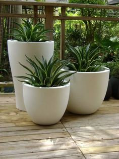 Easy Container Gardening Ideas for Your Potted Plants container pottedplants plants gardening ga House Plants Decor, Patio Plants, Outdoor Planters, Cool Plants, Indoor Plants, Outdoor Gardens, Concrete Planters, Pots For Plants, Container Gardening